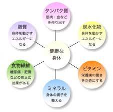 6大栄養素
